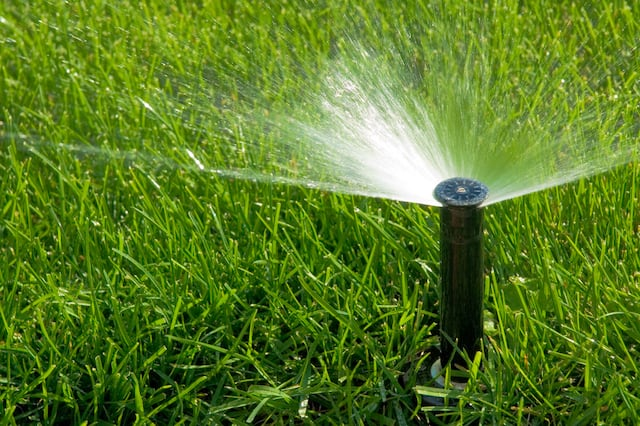 A close up of an automatic irrigation sprinkler watering a green lawn.